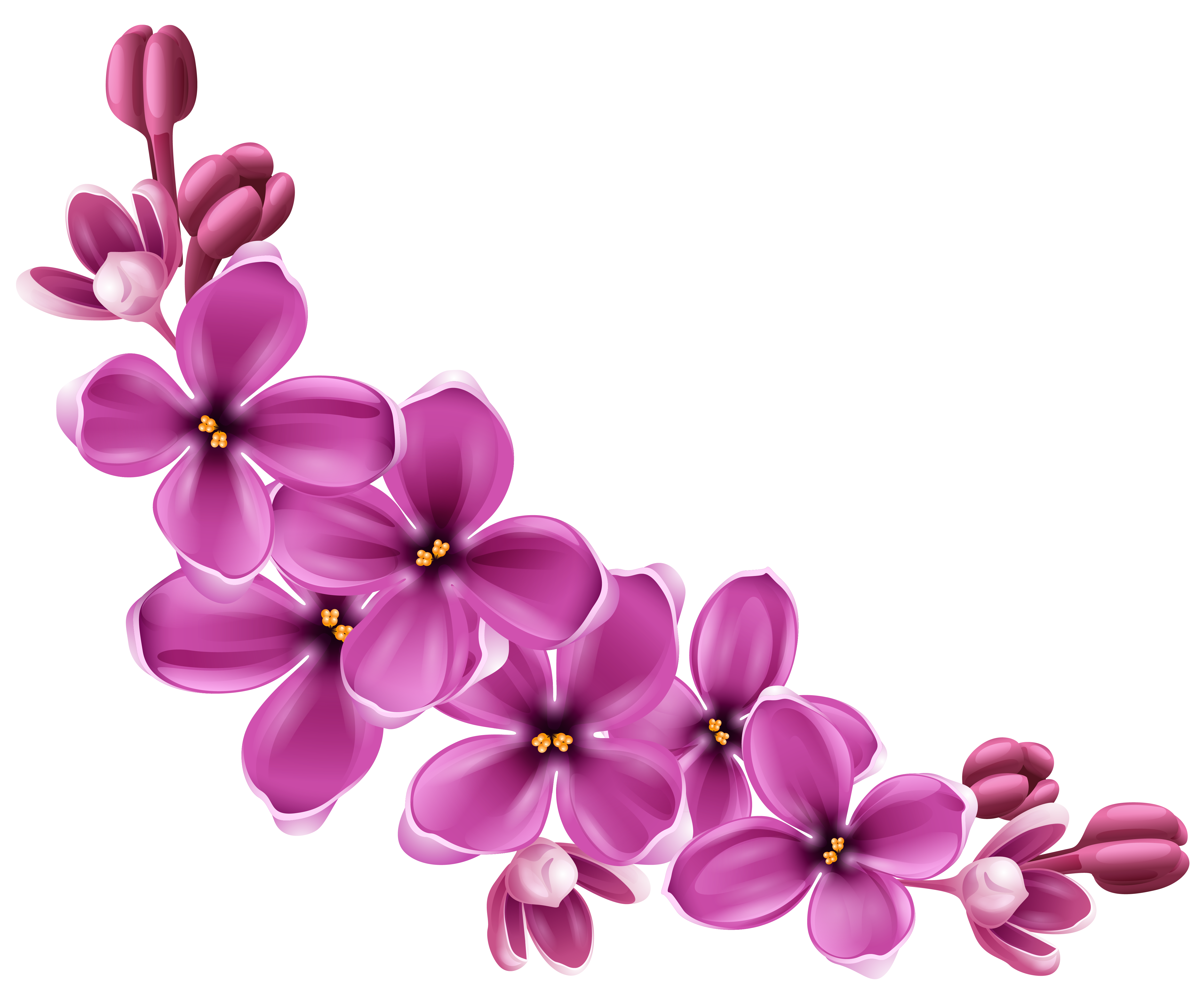 Spring Pink Floral Decor PNG Picture Clipart.