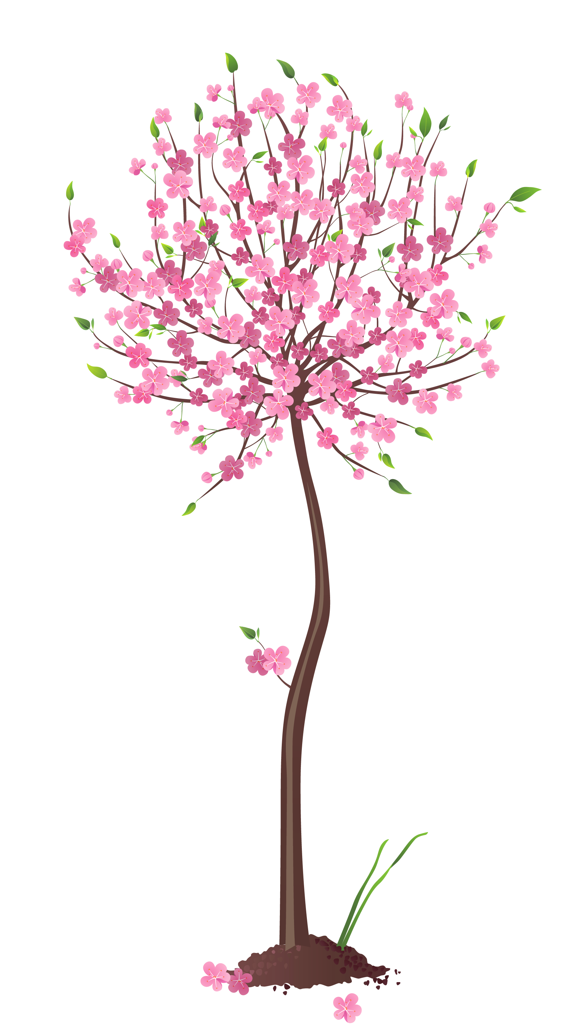 Spring Pink Tree PNG Clipart.