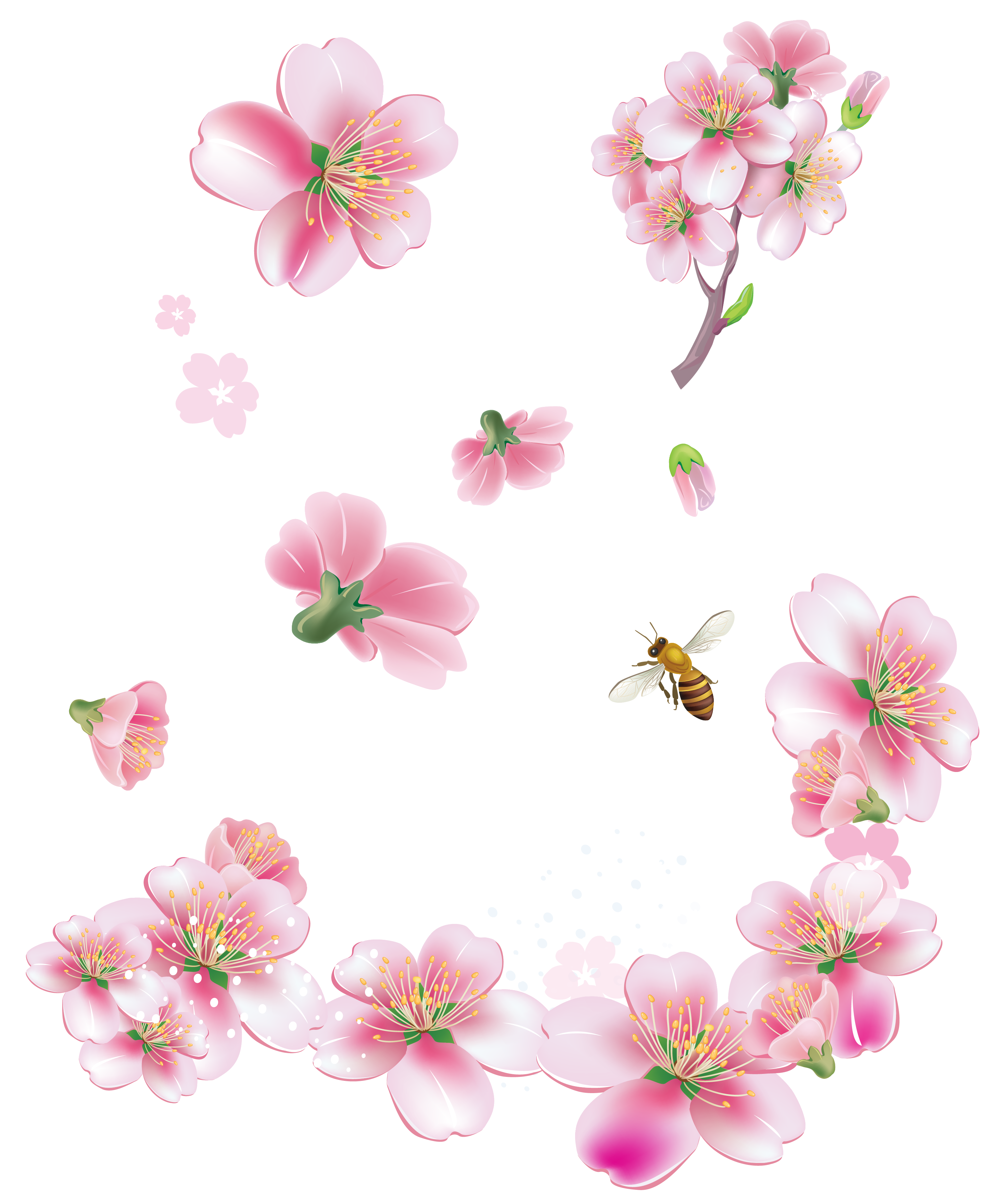 Spring Pink Trees Flowers PNG Clipart.