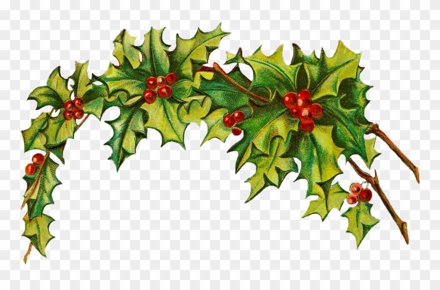 Free Christmas Clip Art Holly Clipart Panda Free Clipart.