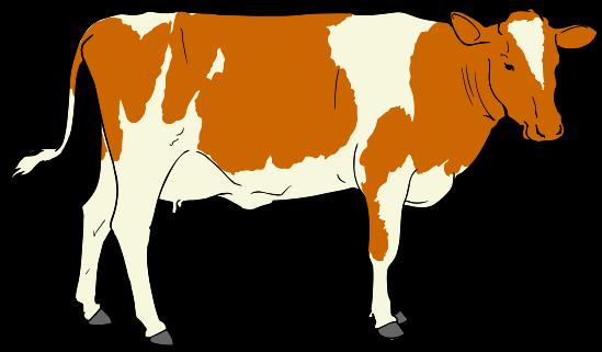 File:Cow clipart 01.svg.