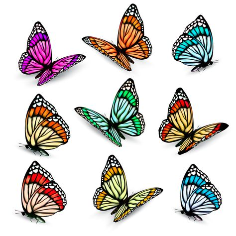 Set of colorful butterflies vector material 09.