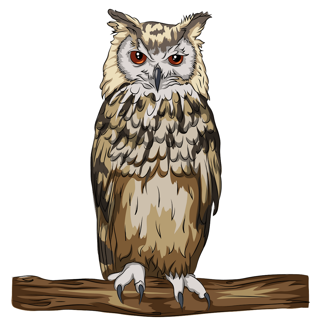 Indian Or Bengal Eagle Owl clipart. Free download..