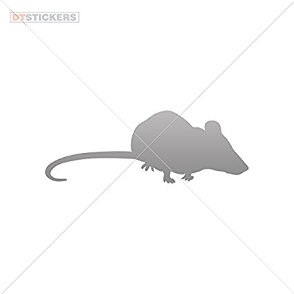 Buy Vinyl Sticker Decal Mouse Figure Atv Car Garage bike fantasy.