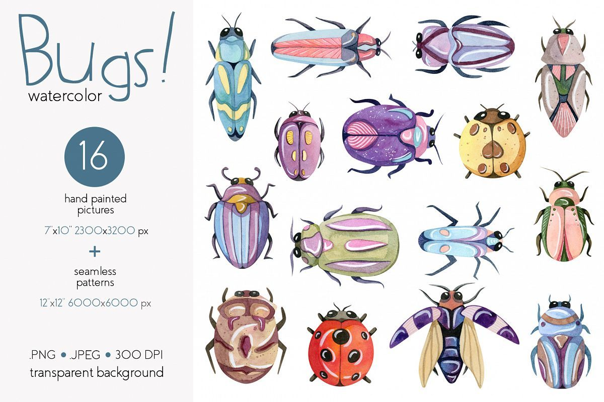 Watercolor Bugs Insects Collection.