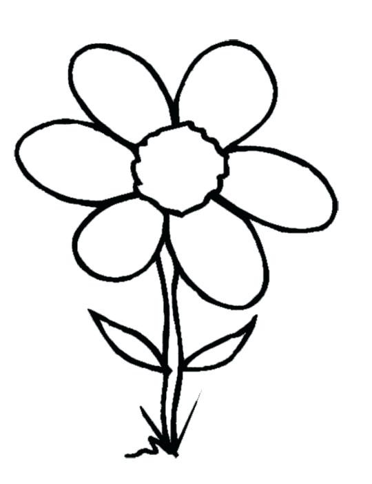 Flower Clipart Pin White Flower Flower Coloring 1 Flower.