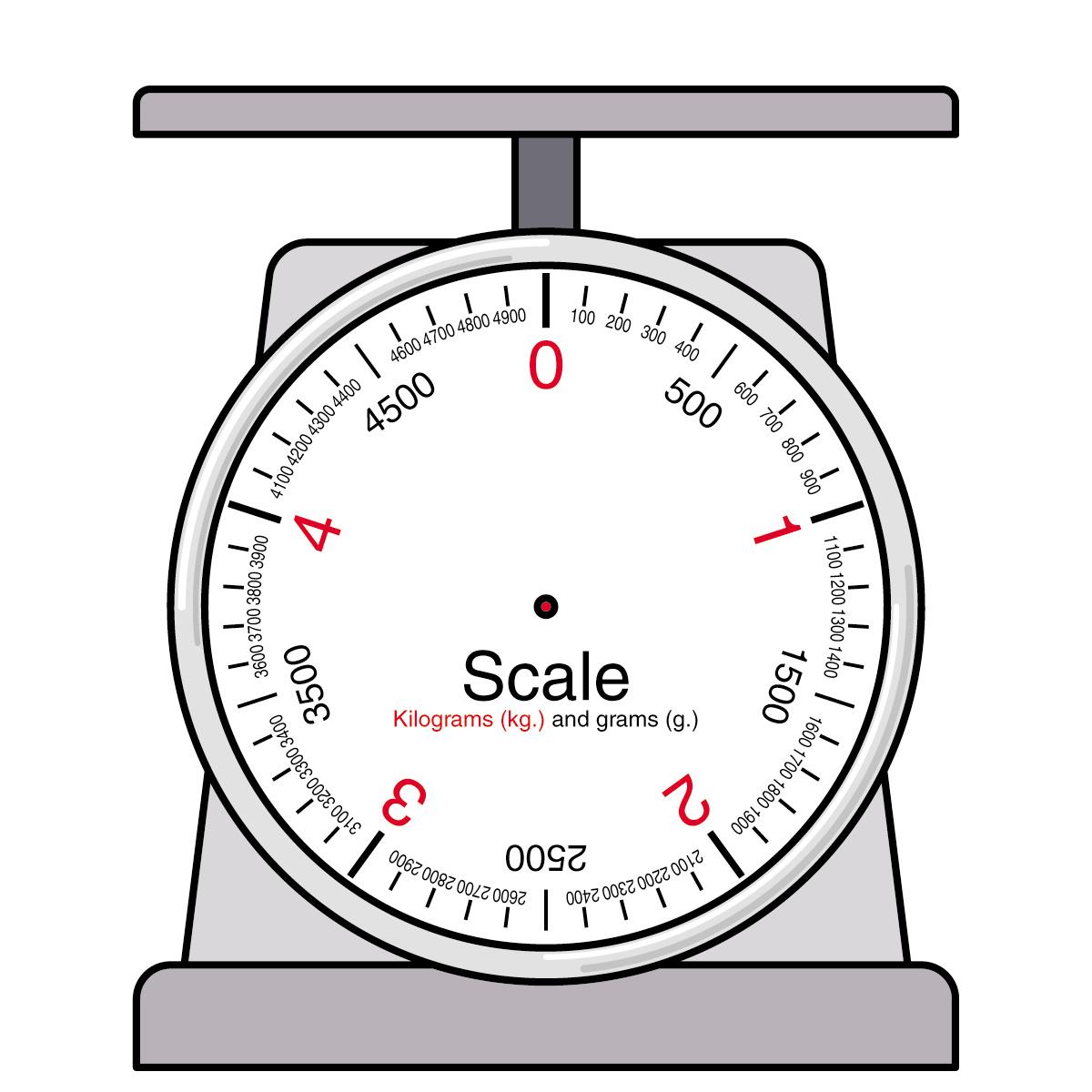 1 gram kitchen scale.