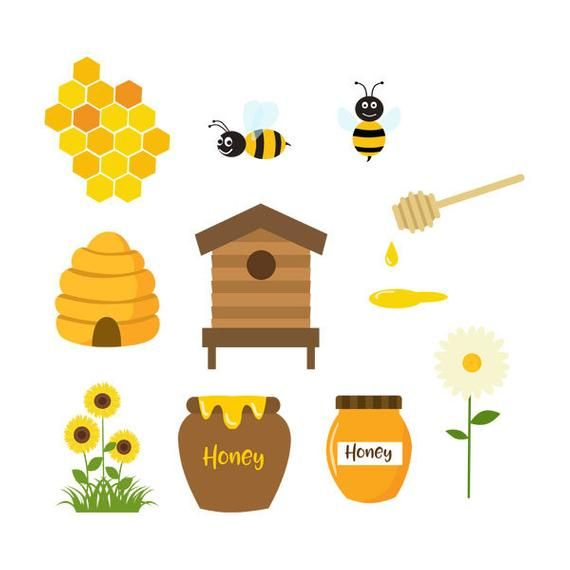 Honey Bees, Clipart, Honeycomb, Bees, Hive, Bee Hive.