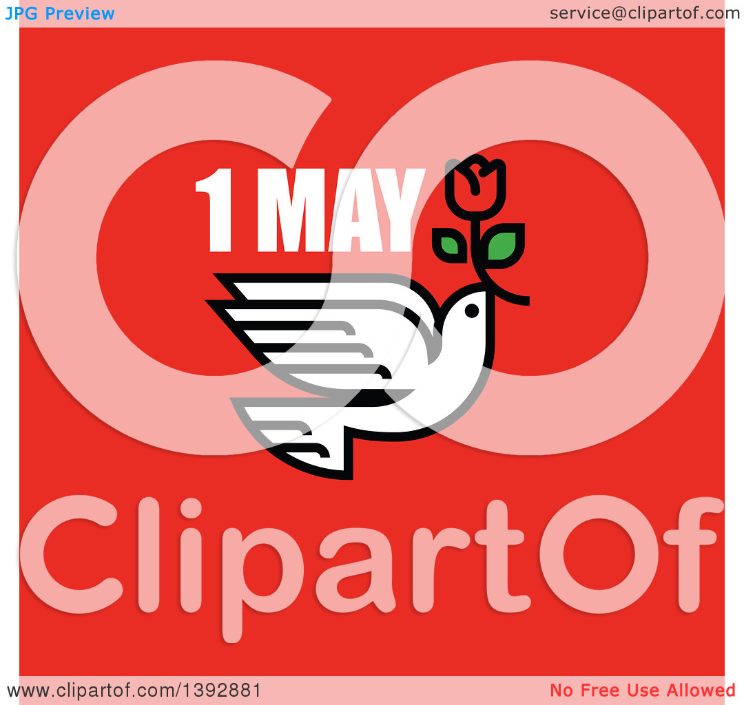 Clipart of a Dove Flying with a Red Tulip with 1 May Text on Red.