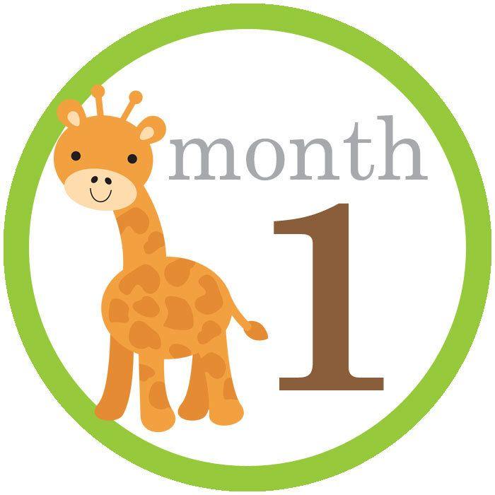 1 month.