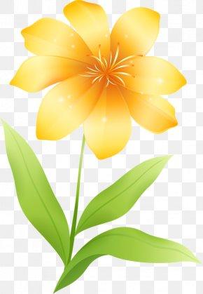 Flower Yellow Clip Art, PNG, 553x800px, Flower, Blog, Color.