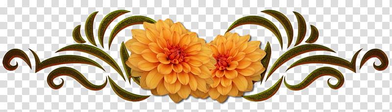 Ornamental Flowers , yellow flower transparent background.