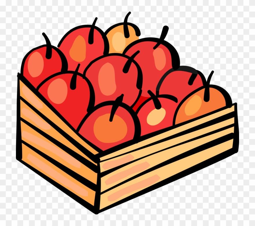 Vector Illustration Of Apple Orchard Fruit Harvest.