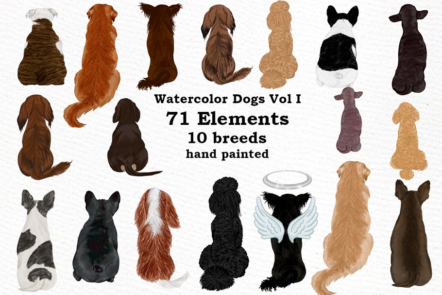 Dogs Clipart,Dog breeds Pet clipart, ~ Illustrations.