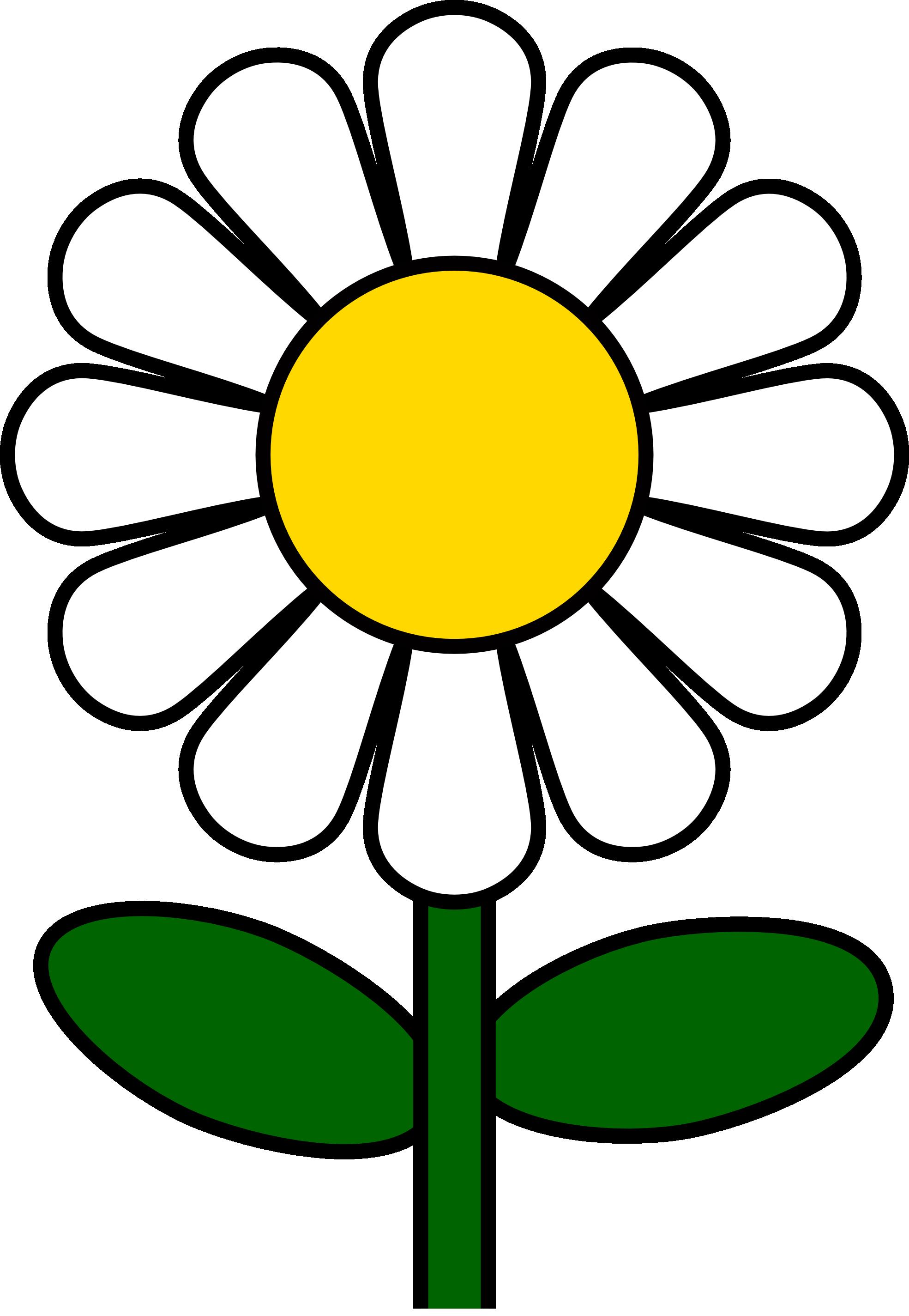 Flower clipart daisy, Flower daisy Transparent FREE for.
