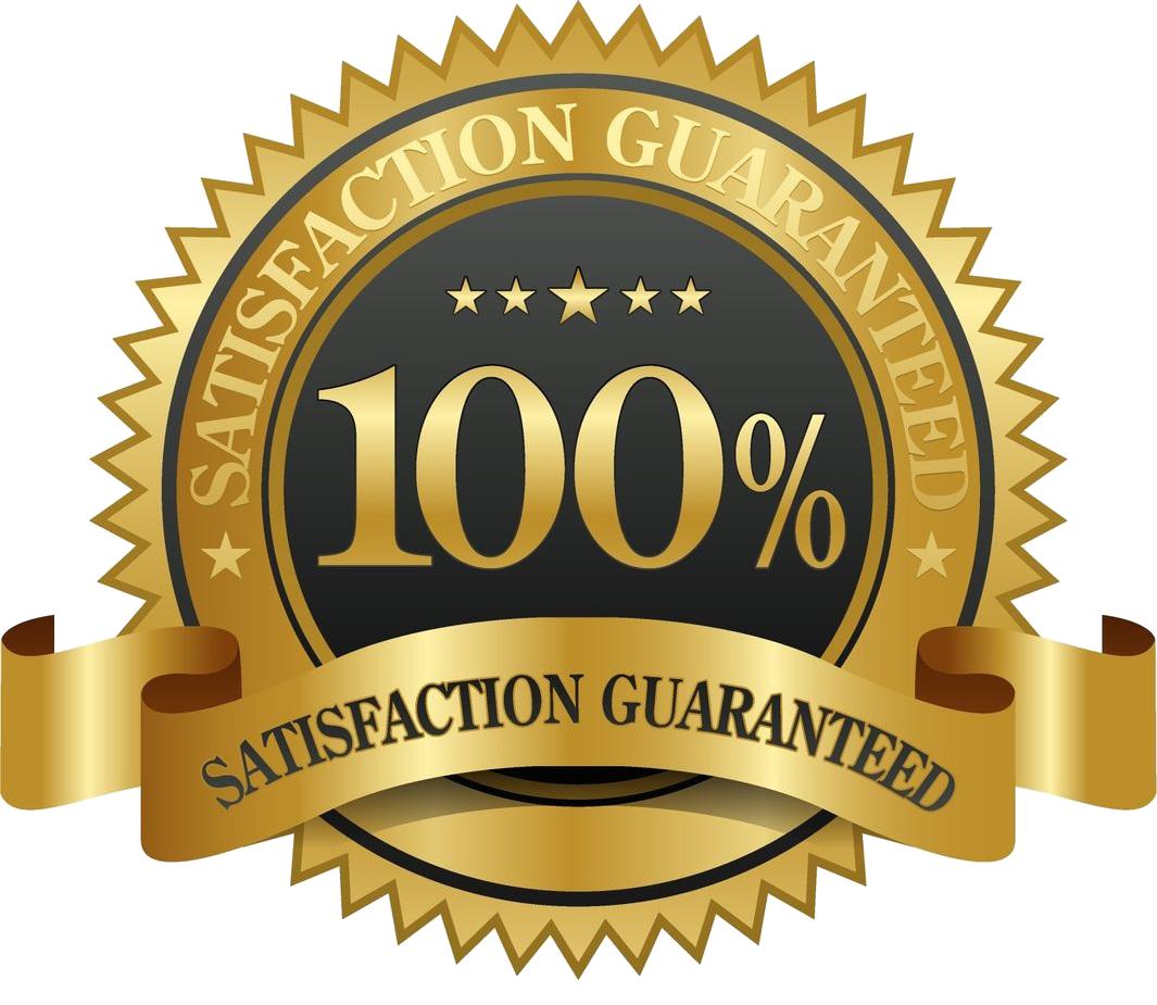 100 Logo.
