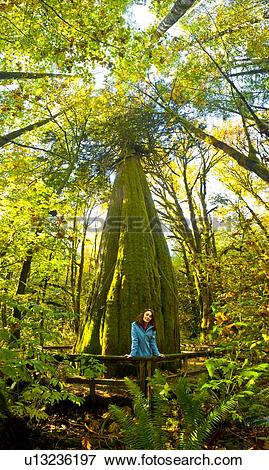 Picture of Woman in front of 1000 year old Western Red Cedar Tree.