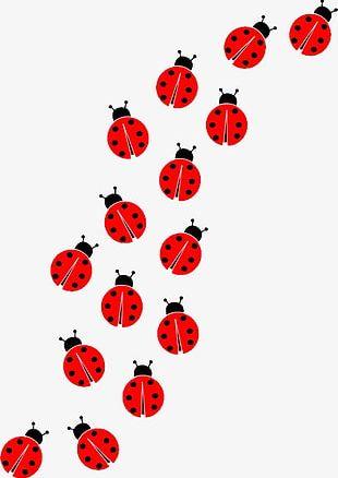 Ladybug Clipart PNG Images, Ladybug Clipart Clipart Free.