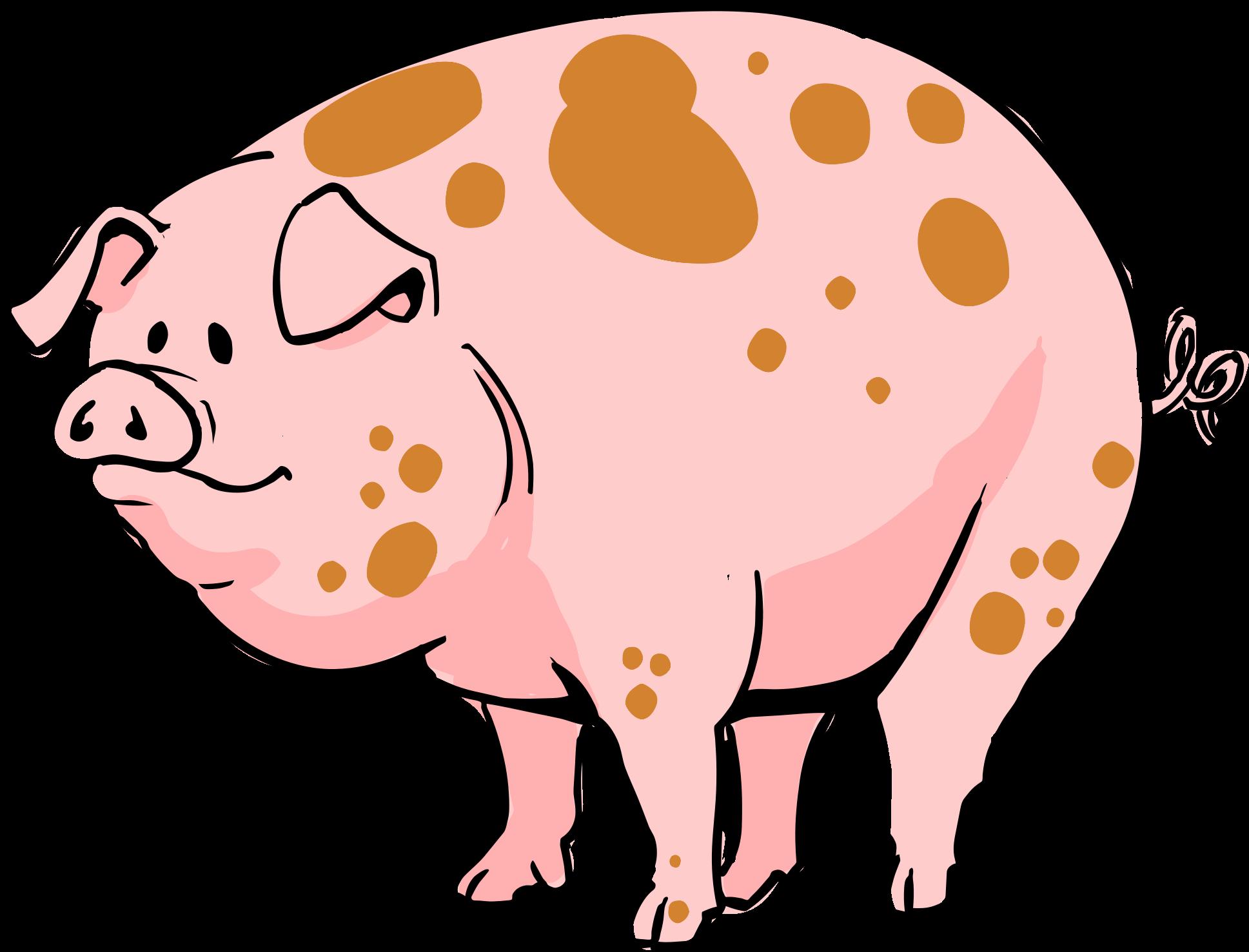 Pig Cartoon.
