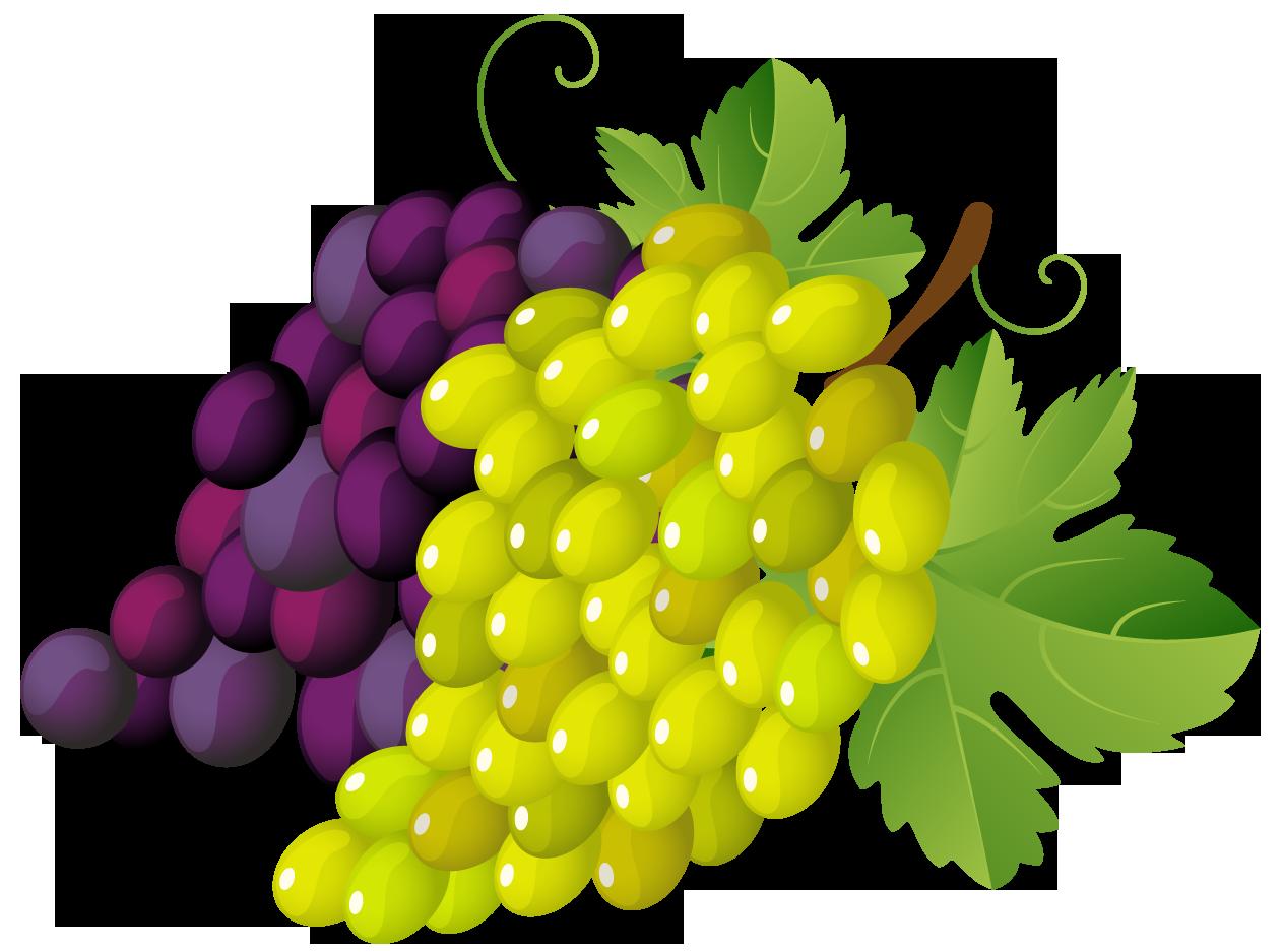 Free Grapes Cliparts, Download Free Clip Art, Free Clip Art.