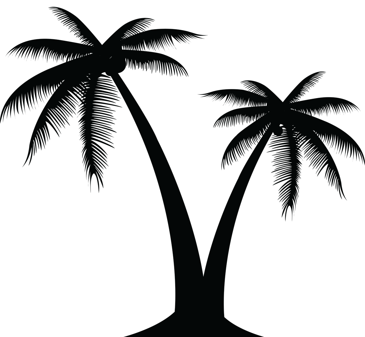Portable Network Graphics Vector graphics Palm trees Clip.