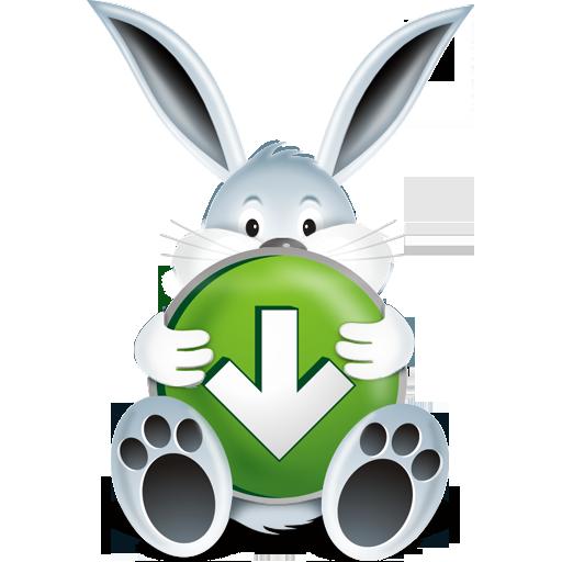 Download Bunny Icon\