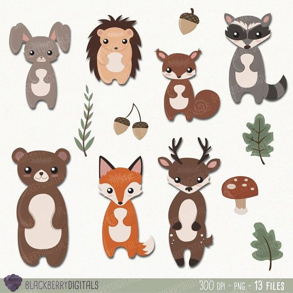 Woodland Animals Clipart Set woodland by BlackberryDigitals.