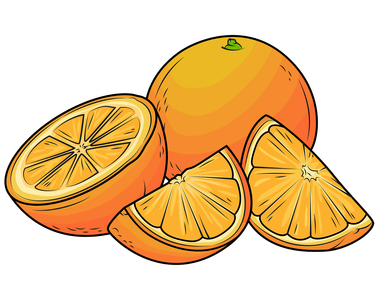 Oranges clipart. Free download..