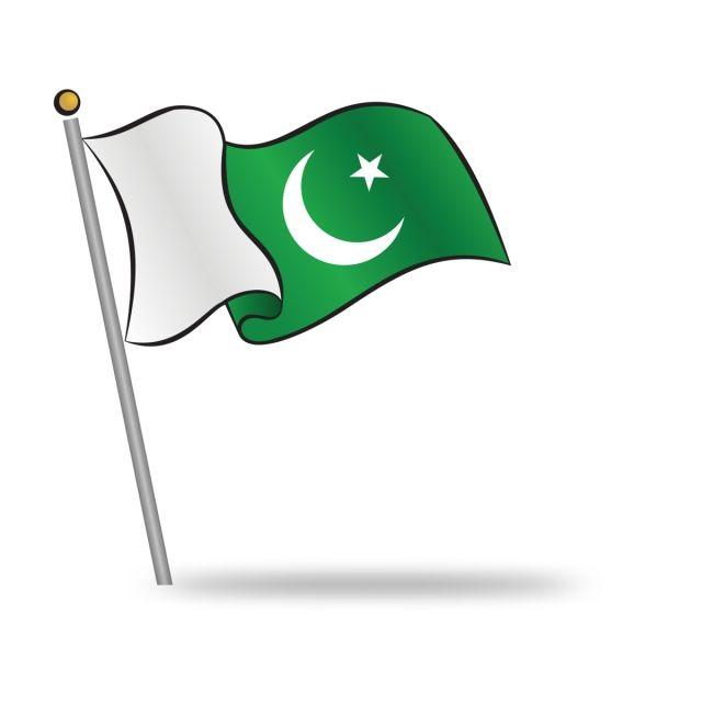2019 的 Pakistani Flag Waving On The Wind 主题.