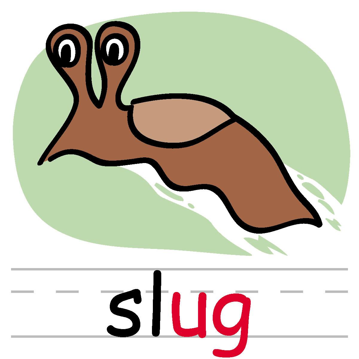 Slug Clipart #144.