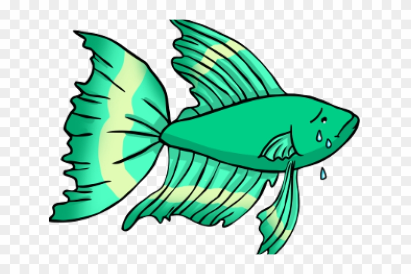 Tropical Fish Clipart Betta Fish.