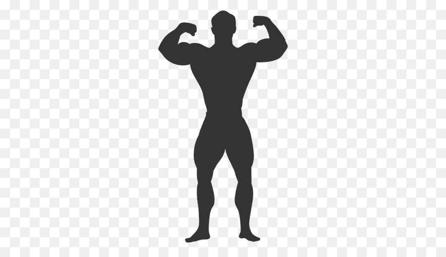 Download Homo sapiens Bodybuilding Clip art.