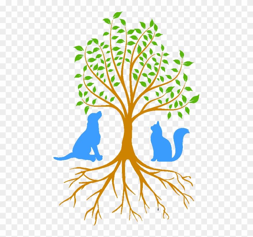 Beaver Brook Animal Hospital Tree Of Life.
