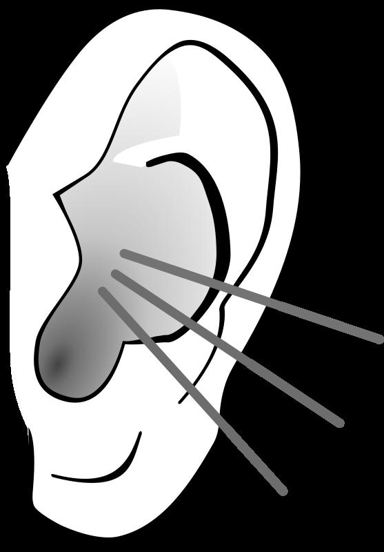 Ear clip art free clipart images 3 clipart.