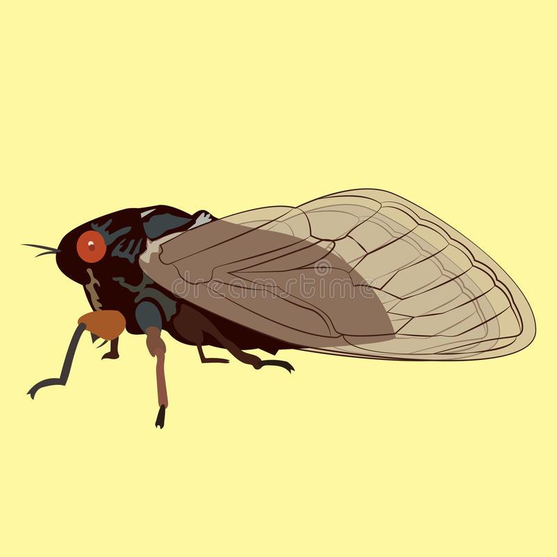 Locust Swarm Stock Illustrations.