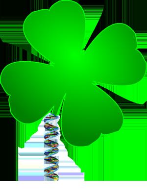 Irish DNA.