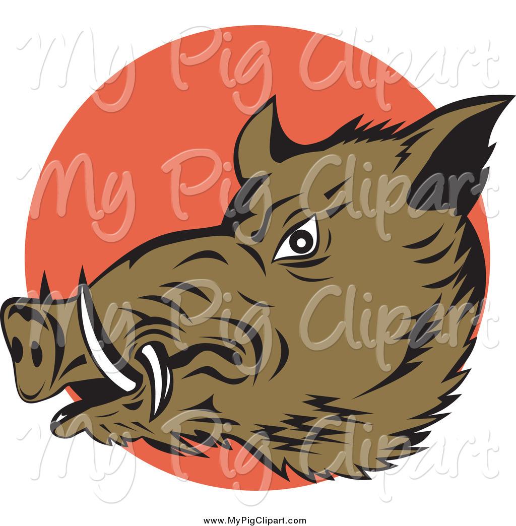 Swine Clipart of a Wild Boar over an Orange Circle by patrimonio.