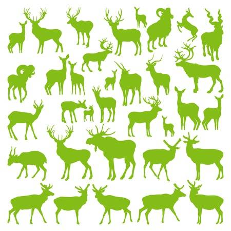 1,739 Doe Cliparts, Stock Vector And Royalty Free Doe Illustrations.