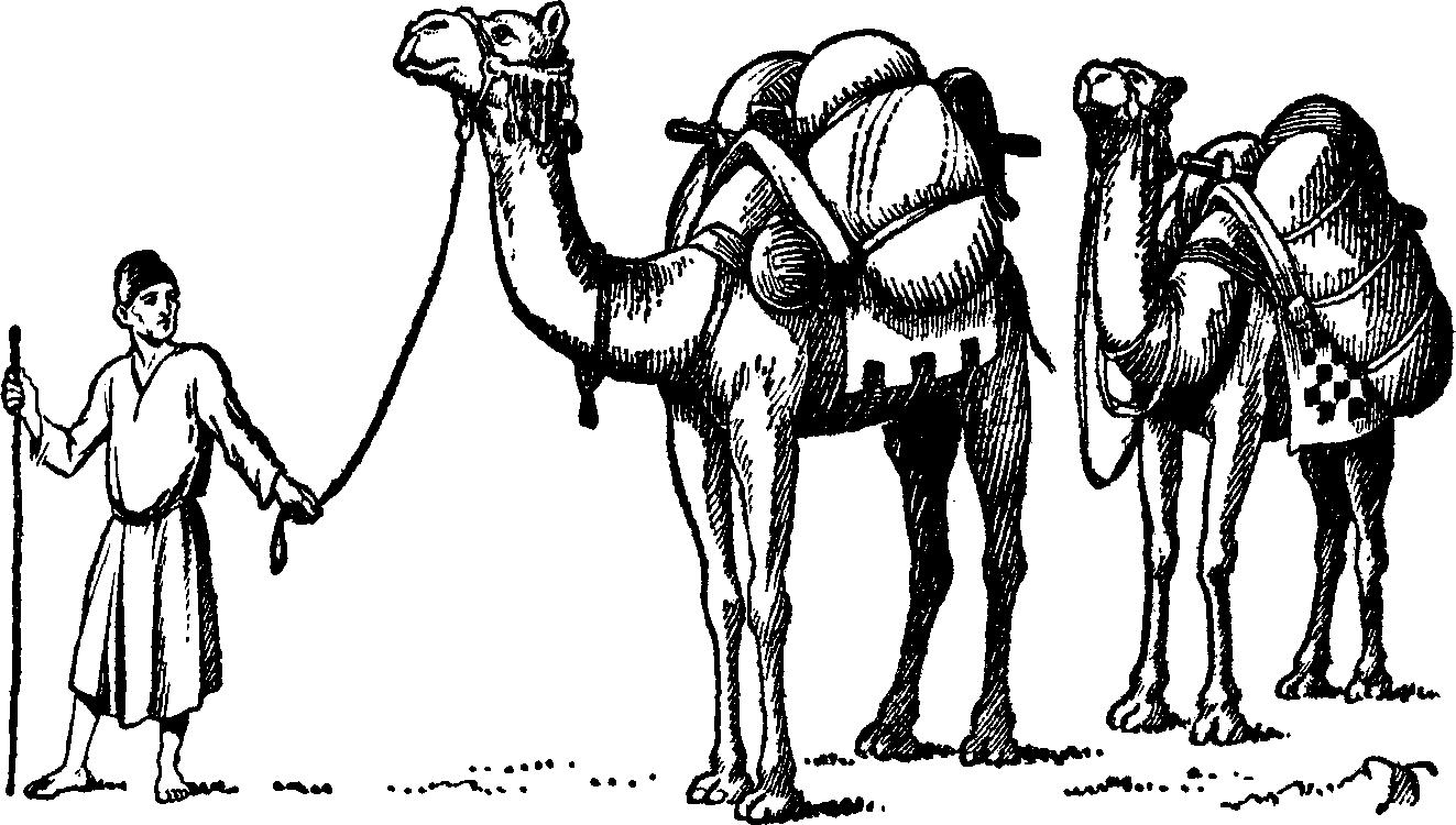 Camel Caravan Clip Art.