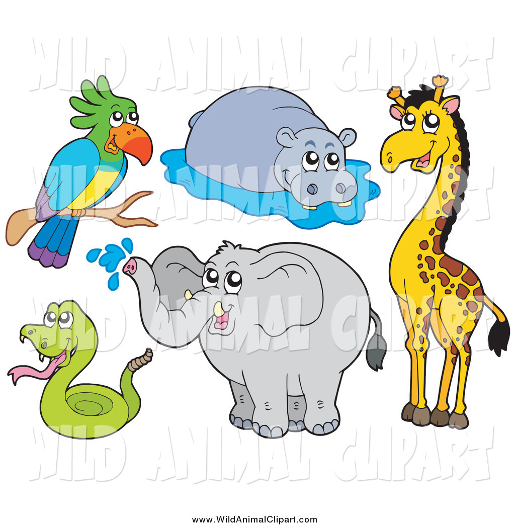 Clip Art of a Wild Parrot, Hippo, Giraffe, Elephant and Snake by.