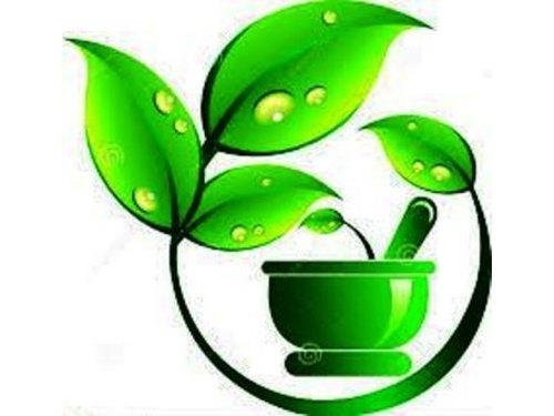 Admission Direct BAMS Top Ayurvedic Medical College In Up.