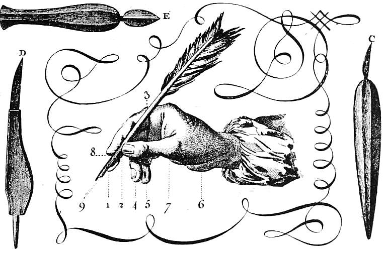 bumble button: Free clip art of Ornamental Penmanship and Drawing.