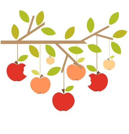 1,828 Apple Orchard Stock Vector Illustration And Royalty Free.