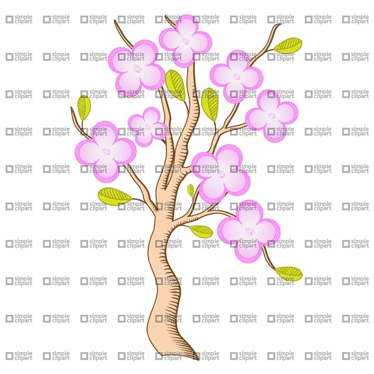Sakura branch blossom Vector Image #1838.
