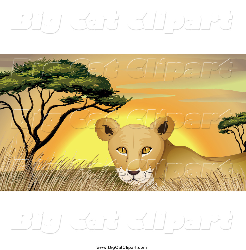 Big Cat Cartoon Vector Clipart of a Lioness in Grass at Sunset by.