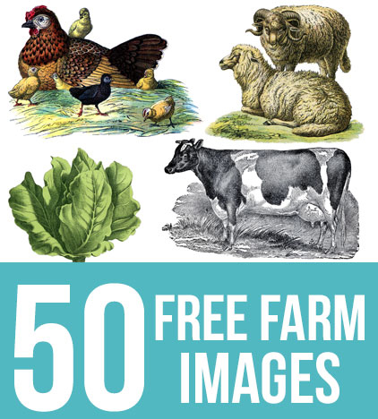 50 Free Farm Images for Farmhouse Style DIY Projects!.