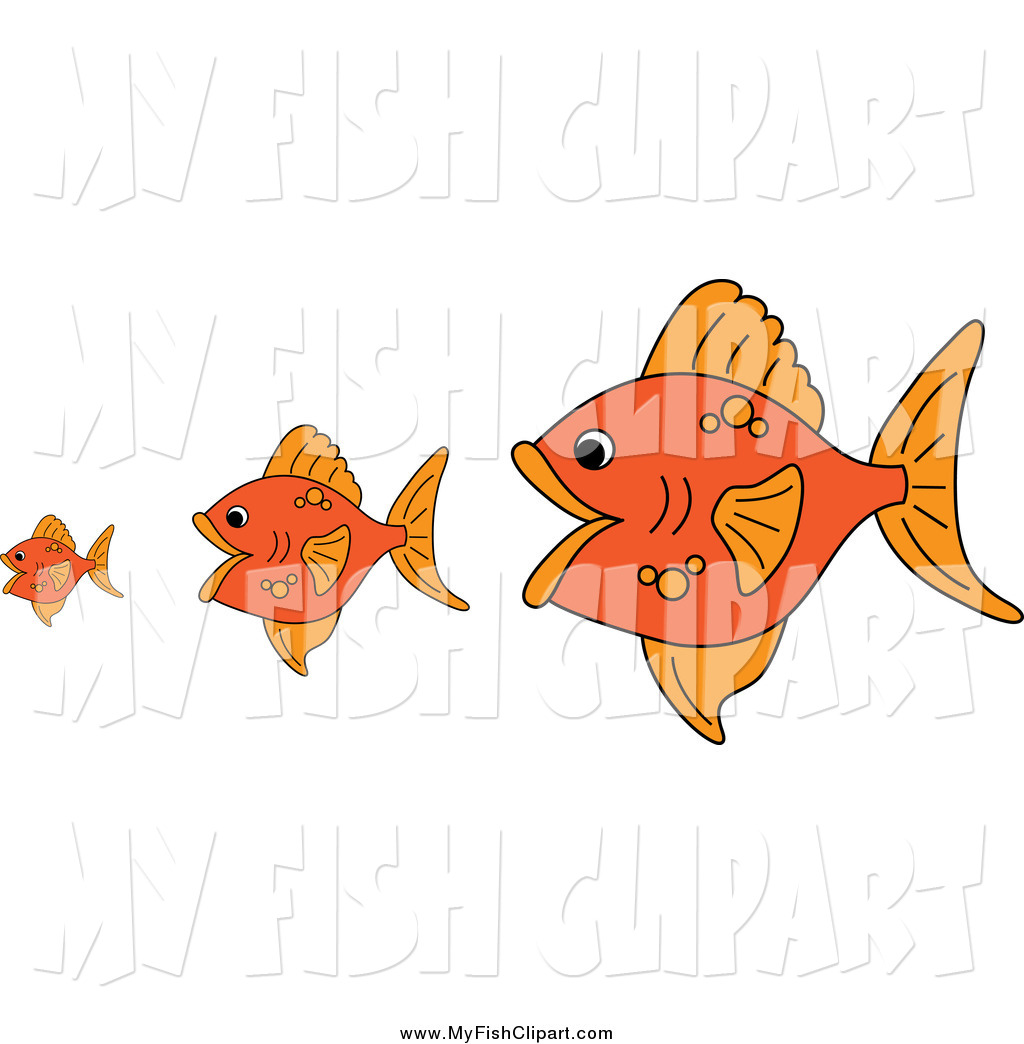 Clip Art of Gold Fish, the Bigger Ones Eating the Smaller Ones by.