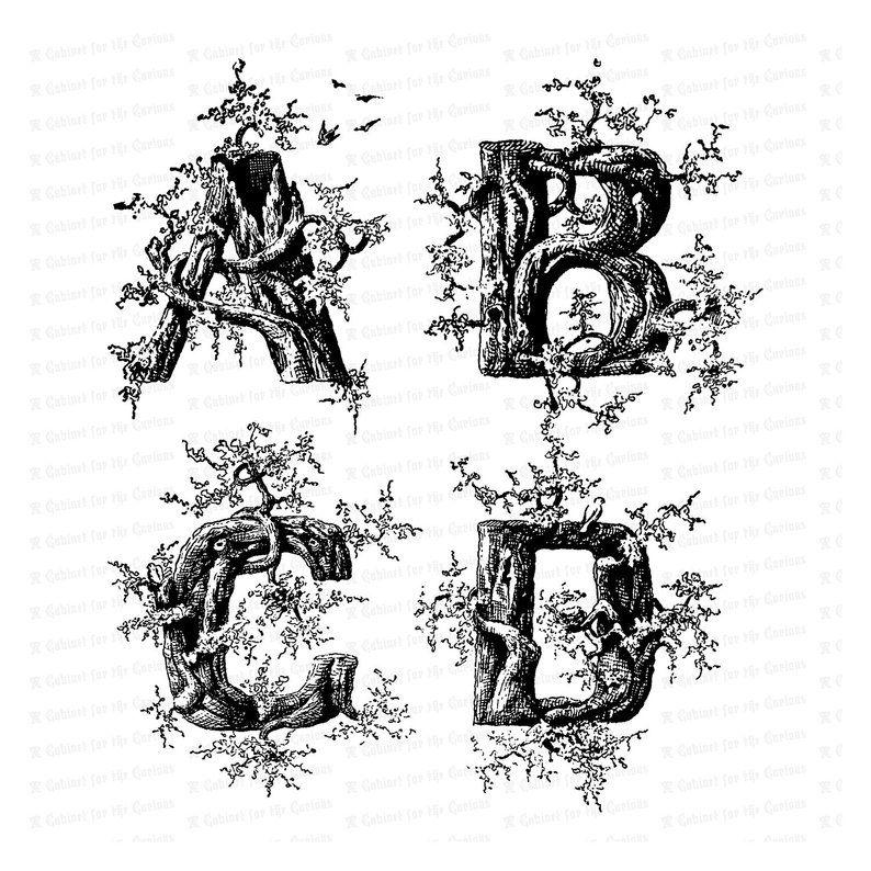 Victorian Rustic Penwork Alphabet Vector Clip Art.