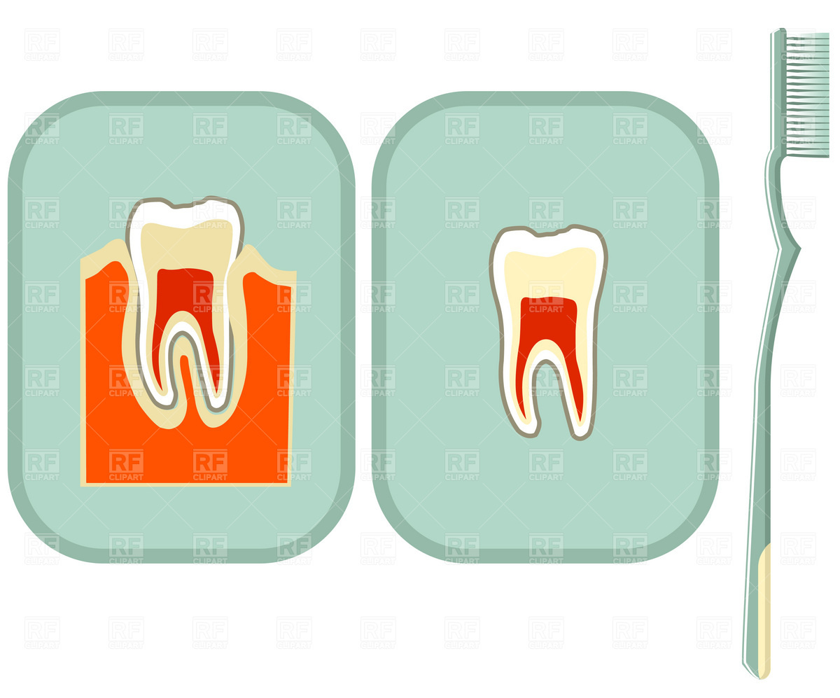 Tooth and toothbrush Vector Image of Healthcare, Medical © good.