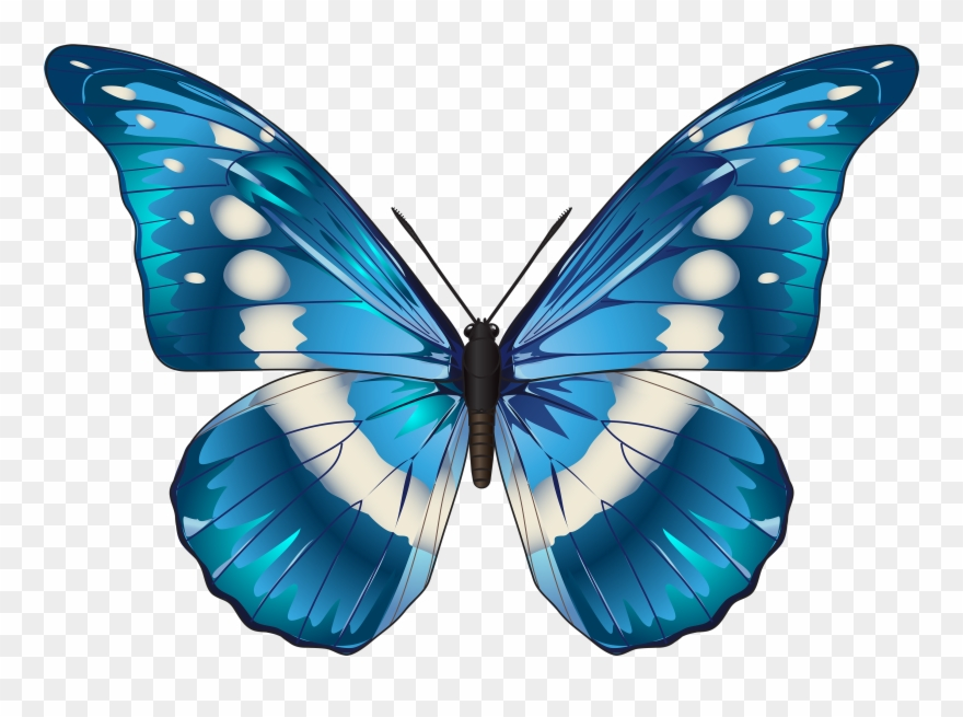 19 Butterfly Clipart Freeuse Huge Freebie Download.